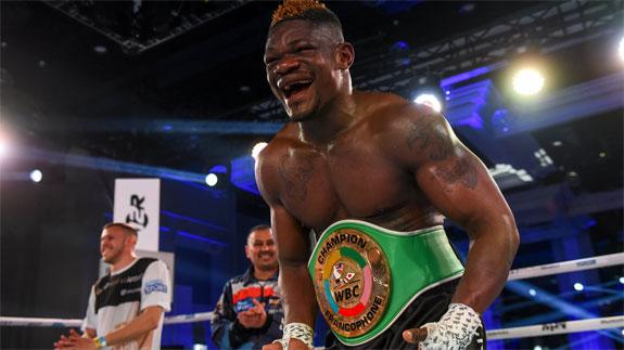 Kalenga znokautował Plesnika, wyniki gali Rocky Boxing Night